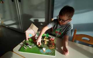 Курсовая работа: Развитие личности дошкольника в процессе общения. Влияние взрослого на формирование личности ребенка