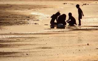 Поездка с детьми на море. Советы родителям. Подвижные детские игры на пляже — чем занять детей на море