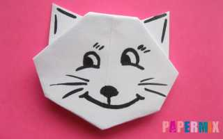 Как сделать голову кошки из бумаги. Как сделать котенка из бумаги своими руками. Необходимые инструменты и материалы