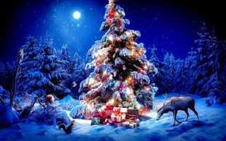 Поздравление рождеством христовым официальное в прозе. Поздравление с рождеством христовым в прозе короткие