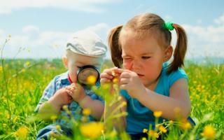 Как дети воспринимают окружающий мир? Маленькие дети воспринимают окружающий мир не так, как принято считать