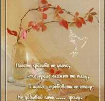 Поздравление с днем рождения стихи известных поэтов. Поздравление с днем рождения словами классиков
