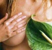 Какие существуют народные средства для увеличения груди. Увеличение грудных желез народными средствами