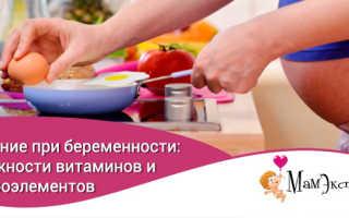 Картофель во время беременности: кладезь микроэлементов и витаминов. Что можно есть беременным — обзор продуктов