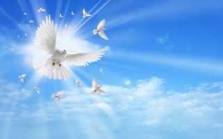 Троица: что важно сделать и что категорически нельзя делать в этот праздник. Что нельзя делать на Святую Троицу и почему