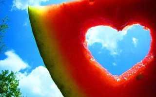 Может человек жить без любви. Как жить без любви и способы борьбы с одиночеством. Любовь снаружи позволить любить и внутри