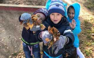 Трудовая деятельность дошкольников в детском саду-что это и для чего нужно? Фотоотчёт «Труд в природе осенью