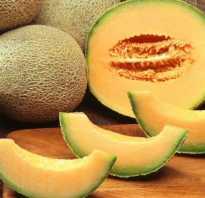 Можно ли беременным дыню в третьем триместре. Дыня при беременности: полезные и вредные свойства ягоды