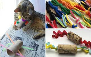 Игрушка для кошки из сантехнических труб. Сложный лабиринт из подручных средств. Самодельная игрушка для котика из коробки
