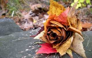 Своими руками из листьев. Поделки из листьев: новые фото идеи, советы, инструкции. Животные из листьев