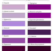 С какими цветами сочетается фиолетовый цвет в интерьере? Интересные сочетания фиолетового цвета в одежде