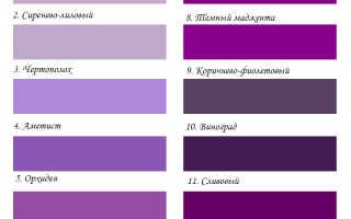С чем сочетается фиолетовый цвет: интересные идеи и рекомендации. Сочетание фиолетового и красного цвета в одежде
