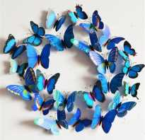 Ажурные бабочки из бумаги схемы. Трафареты бабочек для декора. Как сделать красивых бабочек для декора