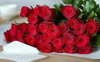 Букет цветов для самой любимой девушки. Значение количества цветков в букете. Выбираем букет в подарок девушке