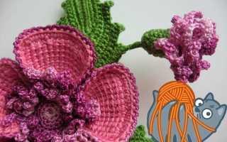 Вязание шапочки с цветком крючком. Вязанные цветочки. Вязаные цветы в горшках крючком схемы с описанием