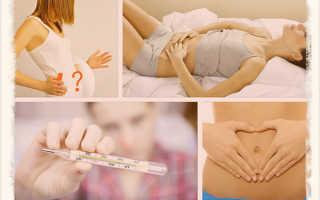 Первые признаки беременности. Выясняем самые первые признаки беременности: что может быть до задержки