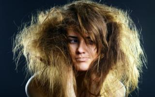 Ваши волосы секутся и сильно ломаются по всей длине? Расскажем, что делать в домашних условиях! Лечение секущихся волос