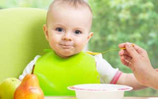Когда можно начинать прикорм грудничка. С чего начинать первый прикорм грудничка? Общие правила введения прикорма