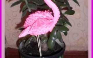 Модульное оригами: Розовый фламинго. Схема сборки с фото. Оригами модульное схемы фламинго Как сделать из бумаги фламинго