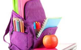 Чем отличается рюкзак от портфеля. Как правильно выбрать школьный ранец: инструкция для заботливых родителей