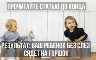 Ребенку 1 год ходит на горшок. Приучение ребенка к горшку: как быстро это сделать. Выбор нужного приспособления