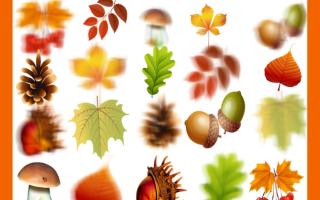 Задания для детей по теме осень. Дидактические материалы на тему: Осень для детского сада. Игра «Отгадай ягоды»
