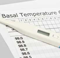 Температура для определения беременности. Эффективность народных методов. Измерение базальной температуры