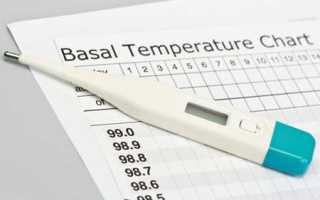 Как определить беременность с помощью градусника. Как измерить базальную температуру для определения беременности