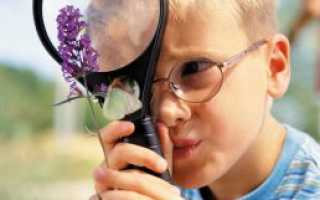 Трудности и проблемы одаренных детей. Лекция: «Личностные особенности одаренных детей. Проблема одаренных детей