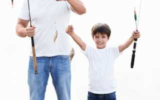 Установление отцовства: как установить отцовство (все варианты)? Установление отцовства в судебном порядке