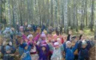 Экологическое воспитание дошкольников: теория и практика по фгос. Рабочая программа « Экология в детском саду