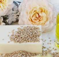 Домашнее мыло своими руками: рецепты для начинающих. Рецепты мыла «с нуля» Мыло для сухой кожи руками