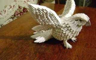 Как сделать голубя из модулей схема. Модульное оригами голубь схема сборки. Видео: Формируем модуль оригами