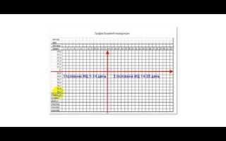 Измерение базальной температуры: основные правила. Методы определения овуляции-базальная температура