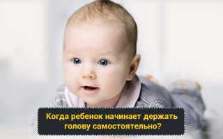 Когда ребенок начинает держать голову после рождения. Развитие малыша: когда новорожденные начинают держать голову