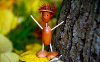 Поделки из шляпок желудей. Детские поделки из желудей на тему «Осень»: мастер-классы с пошаговыми фото