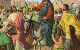 Что делать с освященной вербой прошлого года. Что делать с вербой после Вербного Воскресенья, куда ее девать