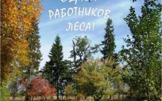 День работников леса поздравления с праздником. Поздравления ко дню работников леса в стихах и в прозе