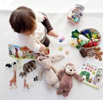 Раннее развитие малышей по системе. Раннее развитие ребенка до года: краткий обзор известных методик