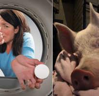 Неприятный запах из машинки автомат. Как избавиться от неприятных запахов в стиральной машине автомат