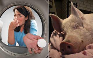 Если из стиральной машины пахнет плесенью. Уход за стиральной машиной: фото. Чем убрать тухлый запах из стиральной машины