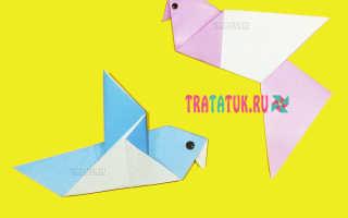 Как делать голубей из бумаги. Бумажные голуби на свадьбу. Голубь мира из бумаги: птица в технике оригами