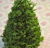 Сделать новогоднюю поделку из фоамирана. Поделки из фоамирана к новому году. Разные игрушки на елку