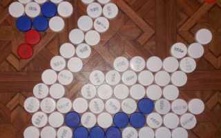 Поделки из пластмассовых пробок. Что можно сделать для дачи из пробок и крышек от пластиковых бутылок