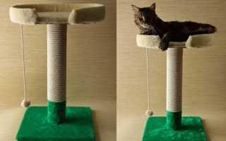 Когтеточка с лежанкой для кошек. Как сделать когтеточку для кошек своими руками — пошаговая инструкция