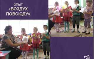 Занятия детей по окружающему миру. Занятия по ознакомлению с окружающим миром. Как происходит оценка результатов