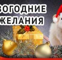 Пожелания счастья в новом году. Красивые пожелания на новый год в стихах. Короткое пожелание на новый год