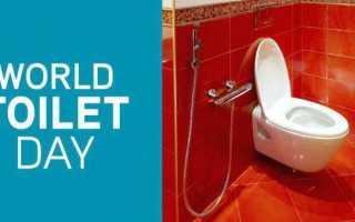 Когда день туалета в году. Всемирный день туалета — праздник для всех жителей Земли! Существуют даже поздравления