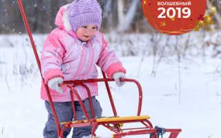 Какие санки выбрать: покупаем сани ребенку. Какими бывают: с лыжами и на колесной базе Какие санки выбрать 1 5